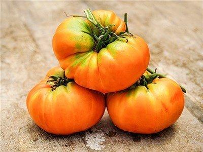 orange Heirloom Tomatoes