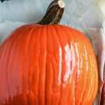 Sugar Pumpkin ready to be roasted on a parchment lined baking sheet.