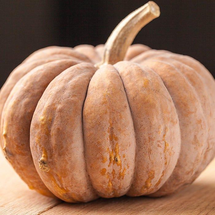 Long Island Cheese Pumpkin on a light wooden butcher block.